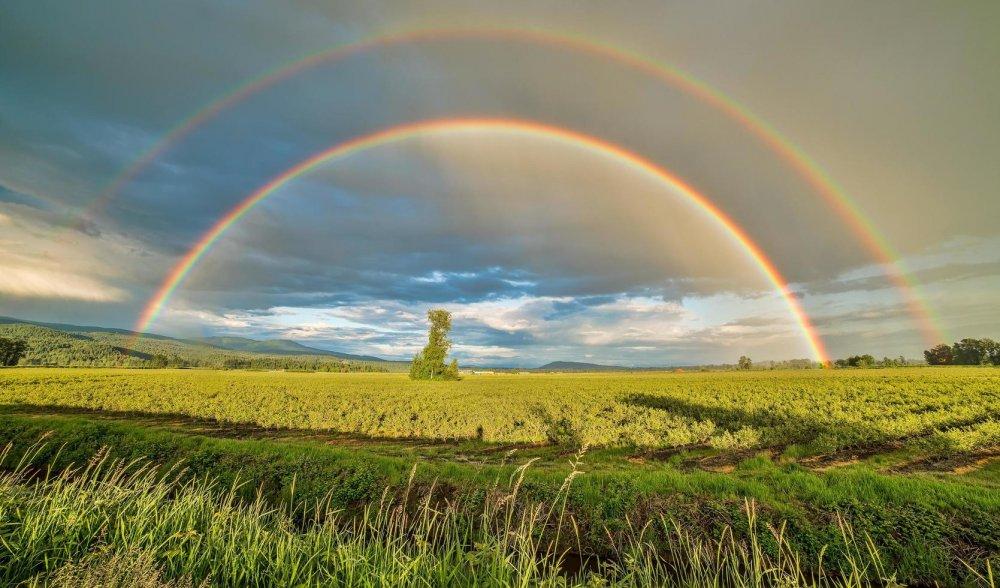 double-rainbow-over-field-free-photo.jpeg